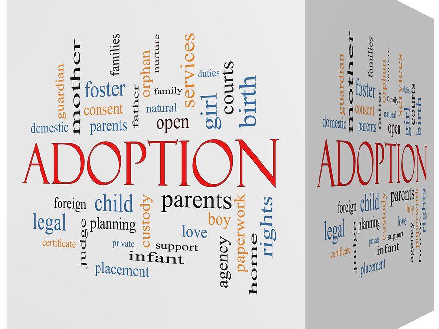 Are Adoption Records Public
