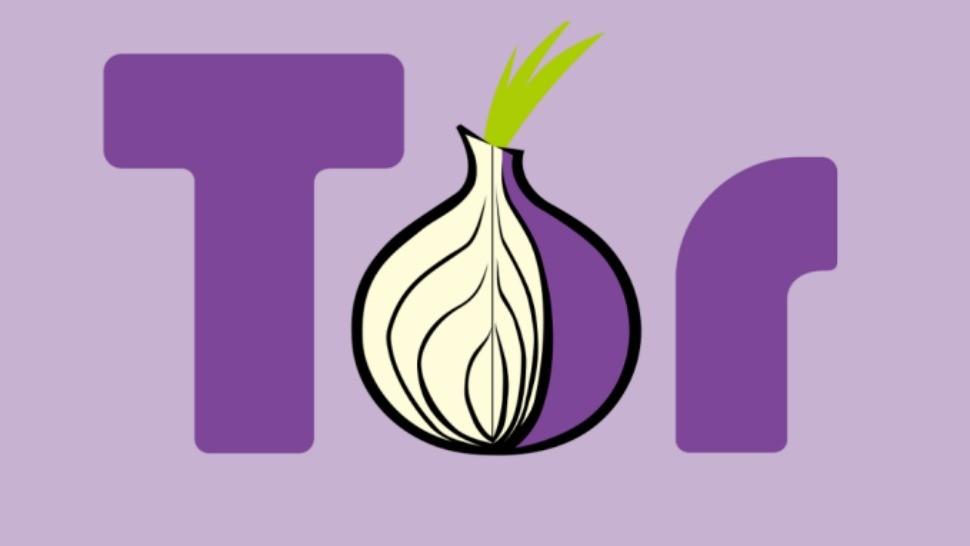 Tor the anonymous browser gydra браузер тор и его аналоги вход на гидру