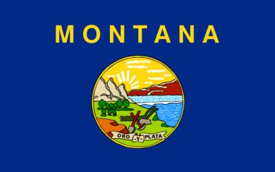Montana Background Check